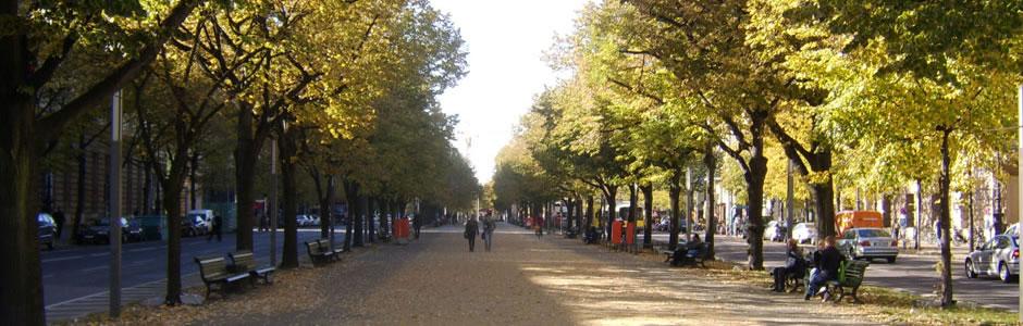 Unter den Linden sétány Berlin
