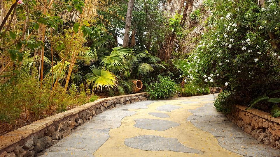 jungle park tenerife